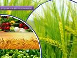Növényvédő szer gyártója és szállítója világszerte - photo 1