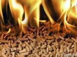 Пеллеты, брикеты топливные, дрова, уголь, торфобрикет. - фото 1
