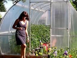 Üvegházak értékesítése a gyártótól a Belarusz Köztársaságban